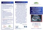 Brochure - MP Congressi, congressi e comunicazioni.
