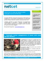 Network per la tutela dei cetacei e delle tartarughe