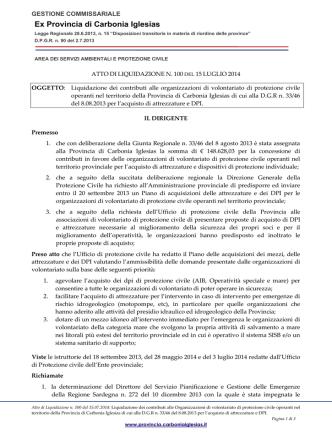 Atto liquidazione n. 100 del 15.07.2014