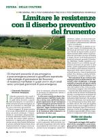 Limitare le resistenze con il diserbo preventivo del frumento
