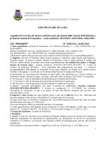 Disciplinare - Comune di Francolise
