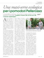 Colture protette - Una maxi-serra ecologica per i pomodori Pellerossa