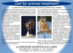 Gel for animal treatment
