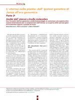 Eterosi_dalSeme #3 - Gianni Barcaccia Laboratory