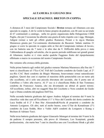 altamura 21 giugno 2014 - Club Italiano Epagneul Breton