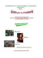Guida per lo studente - Università di Perugia