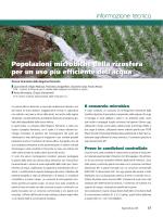 Popolazioni microbiche della rizosfera per un uso più efficiente dell
