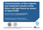 Characterization of flow regimes and heat/mass