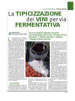 Lieviti autoctoni per vini di nicchia