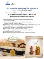 F.LLI CASOLARO in collaborazione con Martellato Srl SILICONE