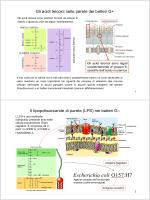 Lezione 2 (1 ottobre 2014)