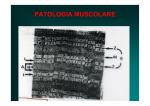 PATOLOGIA MUSCOLARE
