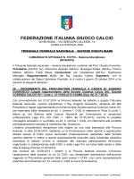Sezione Disciplinare - Federazione Italiana Giuoco Calcio