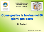 Prof. Giuseppe Bertoni