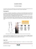Lussazione di rotula