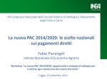 Intervento Fabio Pierangeli