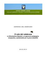 Dispensa Seminario - Volontariato Lazio