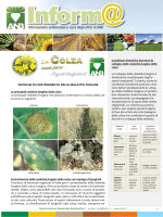 difesa malattie fungine 2014 - Associazione Nazionale Bieticoltori