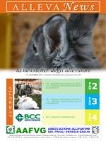 Newsletter ALLEVA NEWS DI NOVEMBRE 2014