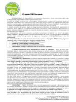 il Progetto CSR Campania - Spazio alla Responsabilità
