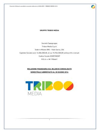 1H2014 TBM CONSO Definitivo