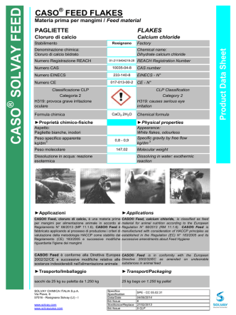 CASO - Solvay Chemicals
