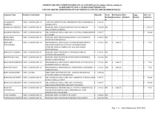 AMMONTARE DEI COMPENSI EROGATI AL 31/01/2015 (art.15