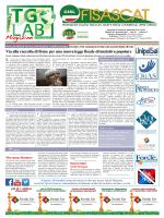 tglab magazine del 30-01-2015