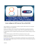 Come configurare Internet APN TIM su iPad iOS8