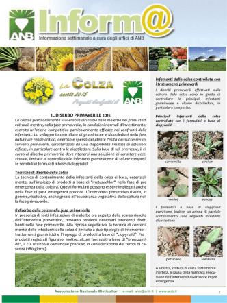 colza - diserbo primaverile 2015 - Associazione Nazionale Bieticoltori