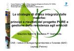 Le strategie di difesa integrata dalle malerbe: principi e risultati del