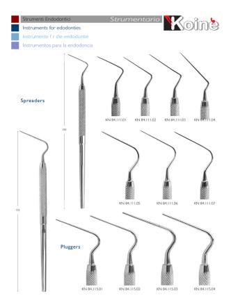 15 strumenti per conservativa
