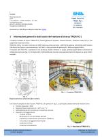 Reattore termico di ricerca TRIGA
