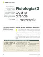 Fisiologia/2 Così si difende la mammella
