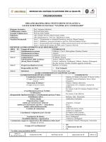 Organigramma 2014-2015 - LSSS Cannizzaro