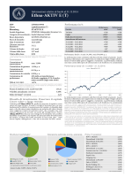 Ethna-AKTIV E (T) 31.12.2014 it_IT Factsheet