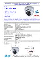 T 24 DILC/HE