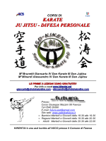 kikentai volantino karate 2013 4p (sequenza)
