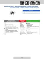 Cattura e liberazione/asportazione di colonie di api, vespe o