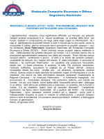 COSTITUZIONE SEGRETERIE PROVINCIALI E REGIONALE