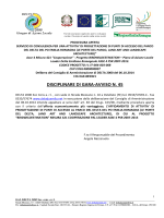 DISCIPLINARE DI GARA-AVVISO N. 45