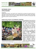 NOTIZIARIO 2/2014 APRILE/GIUGNO