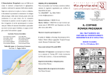 Brochure CPP (2) - sitcccalabria.it