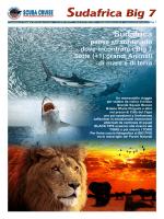 brochure - Scuba Cruise