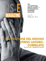 Vol.12 – N.2 - HS+E Magazine