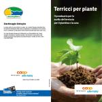 Terricci per piante