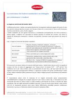La nutrizione dei batteri malolattici: un dettaglio per