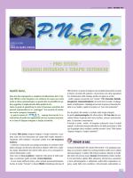 Pnei World n.3 - 2014