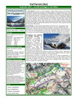 Val Ferret (Ao) - gruppo camosci seregno