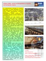 Caratteristiche delle acque marino costiere - Progetto Egadi